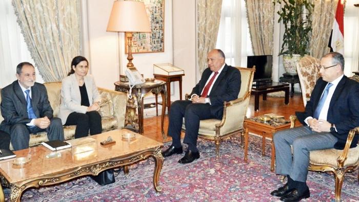 Mısır Dışişleri Bakanı Rojava heyeti ile görüştü