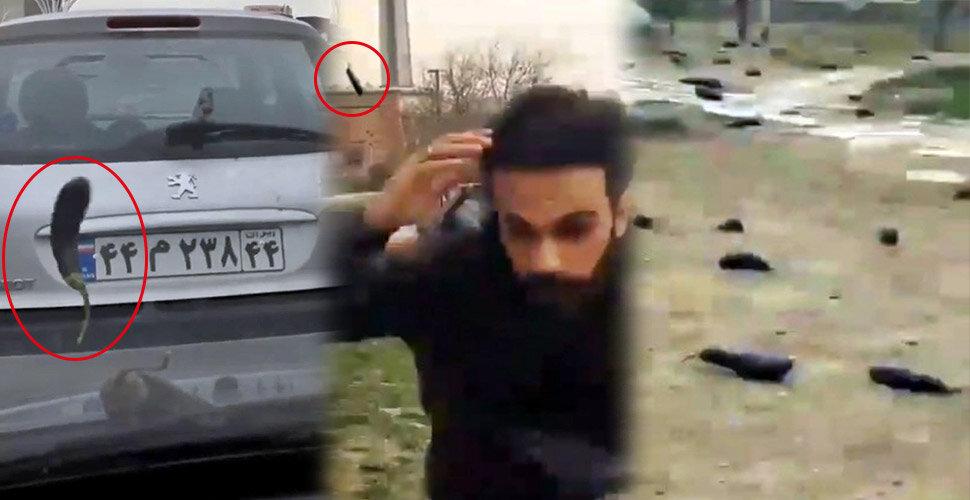 Video | İran'da gökten patlıcan yağdı